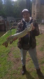 Northern Pike — Pierre Vanderbauwhede