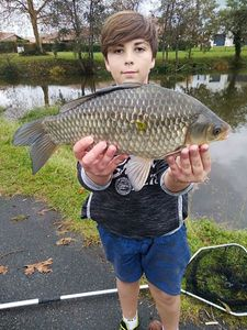 Crucian Carp — raf_ fishing