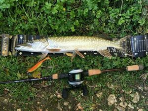 Northern Pike — JD19 JIDLER19
