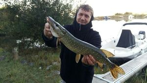 Northern Pike — Sylvain Flassayer