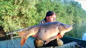 Mirror Carp — Romain Ceolin