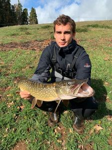Northern Pike — Fanatick Fisher