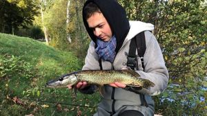 Northern Pike — Brad Perrot