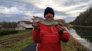 Northern Pike — Ludovic Pendillon