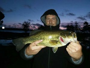 Largemouth Bass — Sylvain Flassayer