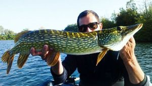Northern Pike — Anthony Sellier