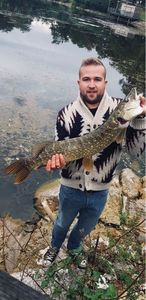 Northern Pike — Guillaume Morel