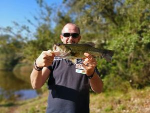 Largemouth Bass — Yann Hdn