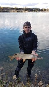 Northern Pike — Arnaud Muller