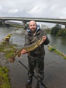 Northern Pike — Cedric Coppier