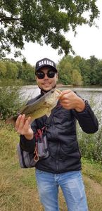 Largemouth Bass — Augustin Q