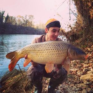 Common Carp — Miguel Ribera