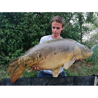 Romain Carpfishing