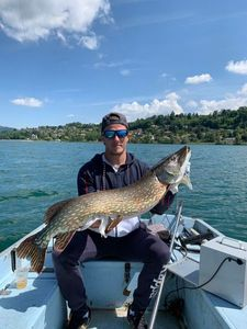 Northern Pike — Pierre Biglia