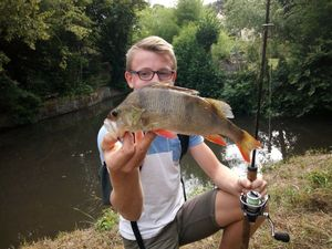 European Perch — Loupi pecheurs