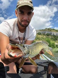 Northern Pike — Adrien Ousselin