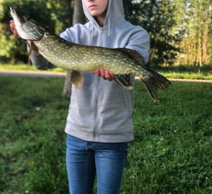 Northern Pike — Tristan Marquant