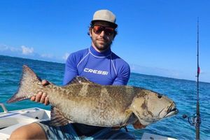 Blacksaddled Coralgrouper — Capt'n Single Hook