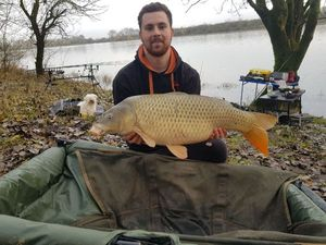 Common Carp — Sebastien Rateau