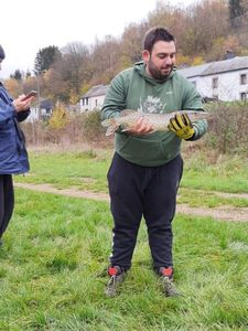 Chain Pickerel — Guillaume Castellani