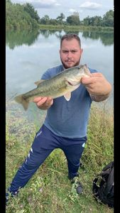 Largemouth Bass — Lucas Hernandez