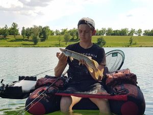 Chain Pickerel — Yoann Bouchet
