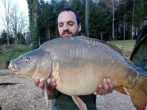Mirror Carp — Vincent Richard