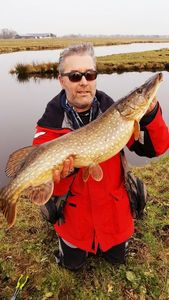 Northern Pike — Jean-paul Jacquet