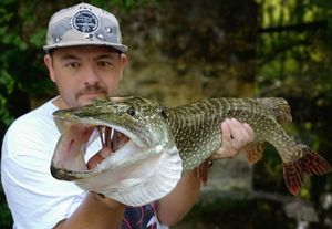 Northern Pike — Stephane Leurriste