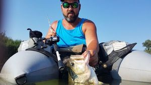 Largemouth Bass — Davide Tosato
