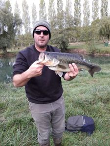 Largemouth Bass — Hervé Lecanu
