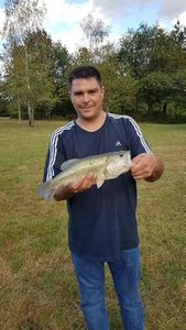 Largemouth Bass — Nicolas Douy
