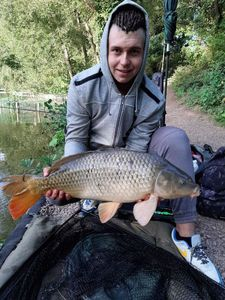 Common Carp — Rodrigue Bouchend'homme