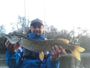 Northern Pike — Herve Savager's