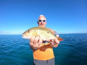 Mutton Snapper — Tynilla Fishing