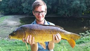 Common Carp — Pierre Chevillard